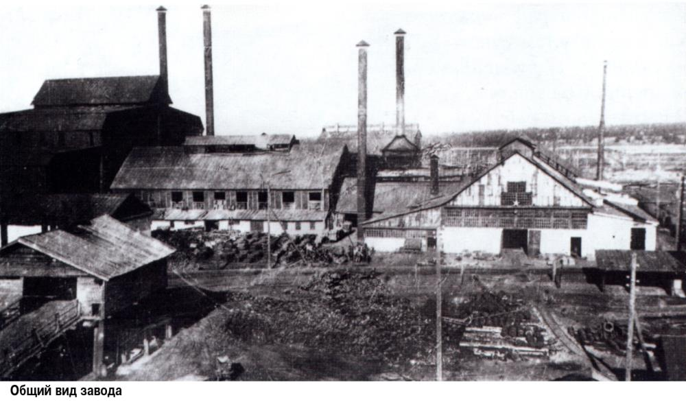 7 Общий вид завода